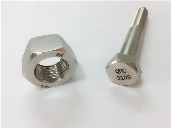 china screw at nut ss310s